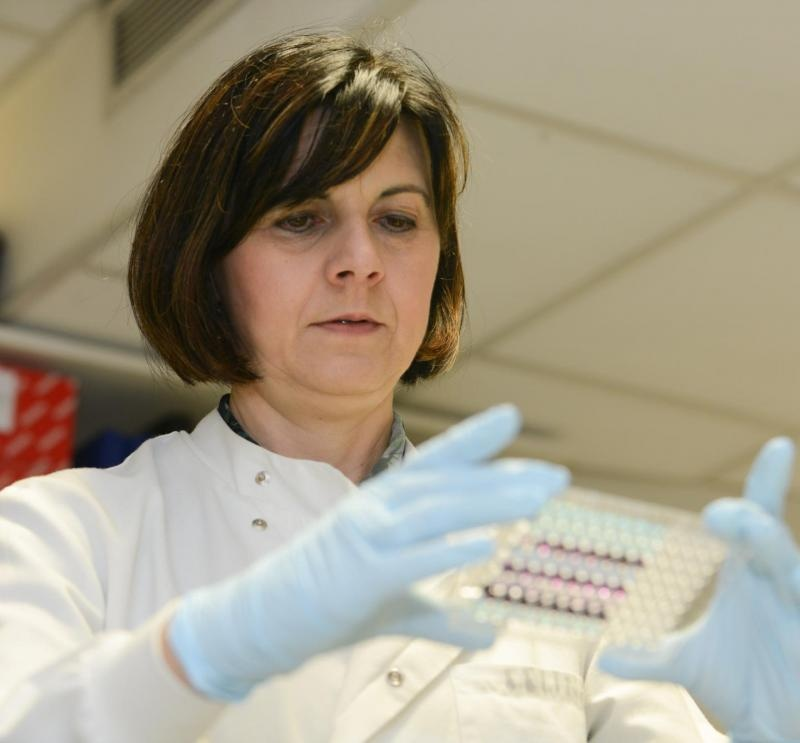 Biomarker discovery could lead to urine test for early stage pancreative cancer