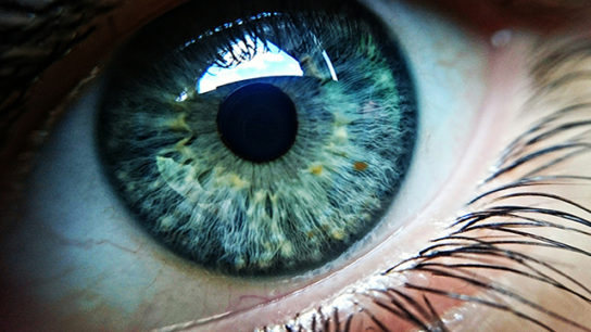 A close-up of the human eye.