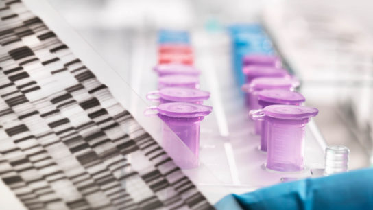 Genetic testing to determine cancer risk